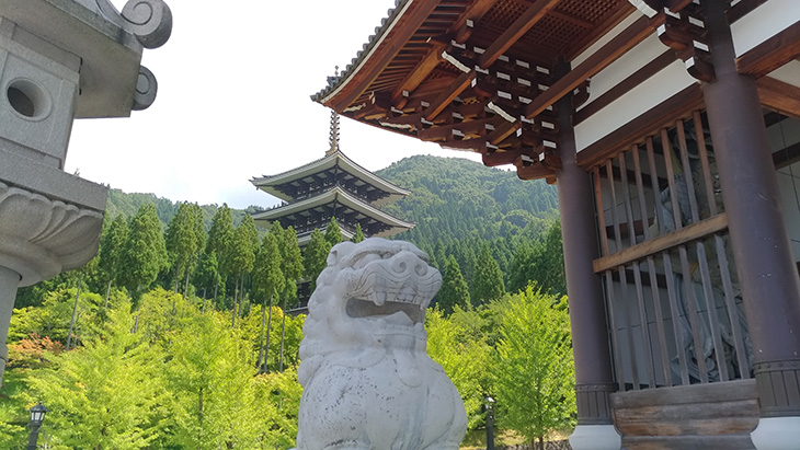 越前大仏 清大寺 五重の塔